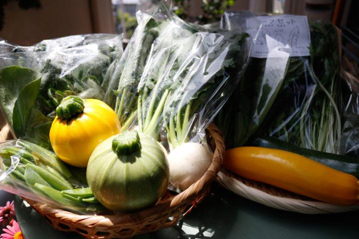 麻王伝兵衛の野菜
